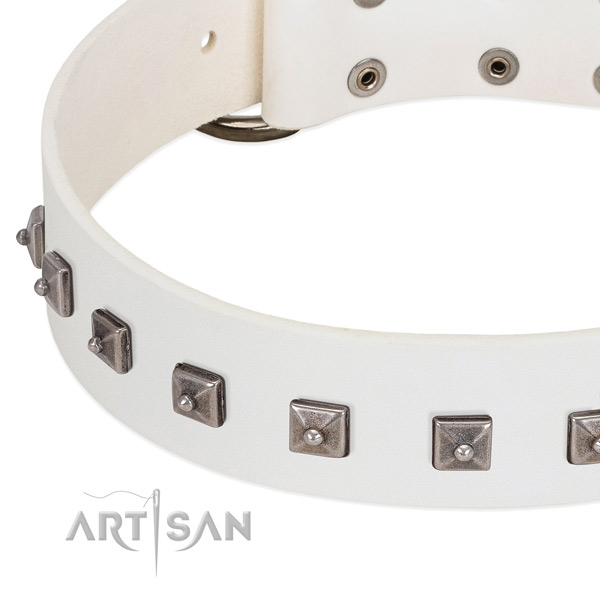 White leather dog collar with posh decorations