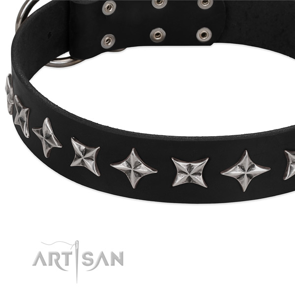 Matchless chrome-plated stars on FDT Artisan leather dog collar