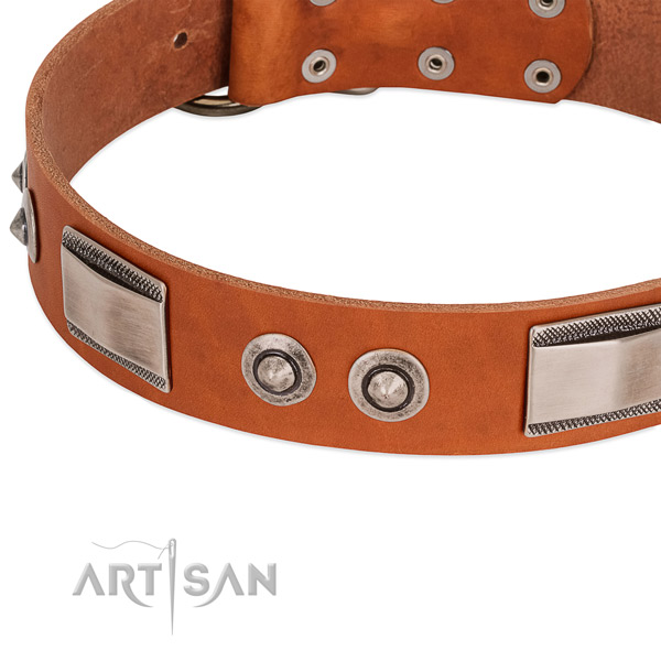 Classy Leather Dog Collar with Shiny Brooches adn Plates