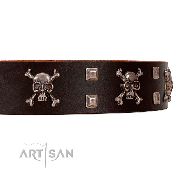 Brown leather dog collar with awesome decorations