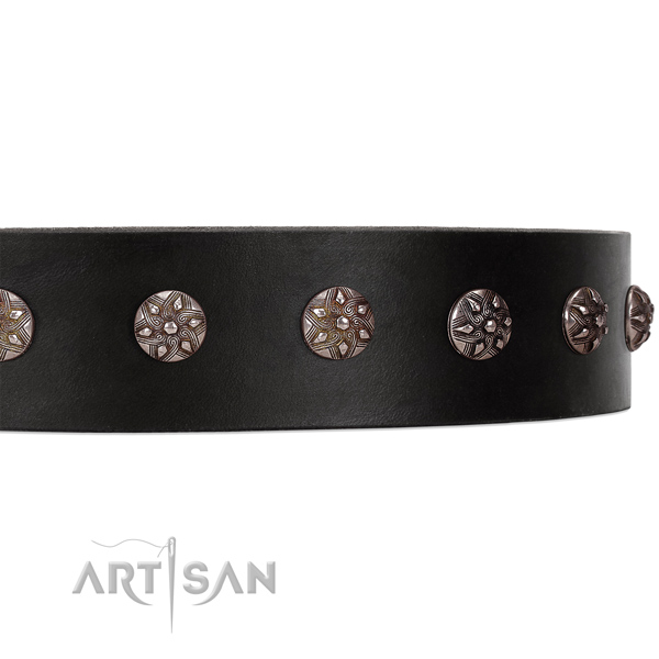 Black leather dog collar with stylish studs with engraved flowers