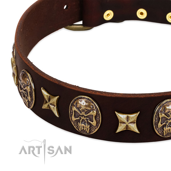 Old bronze-like stars and skulls on brown leather FDT Artisan collar