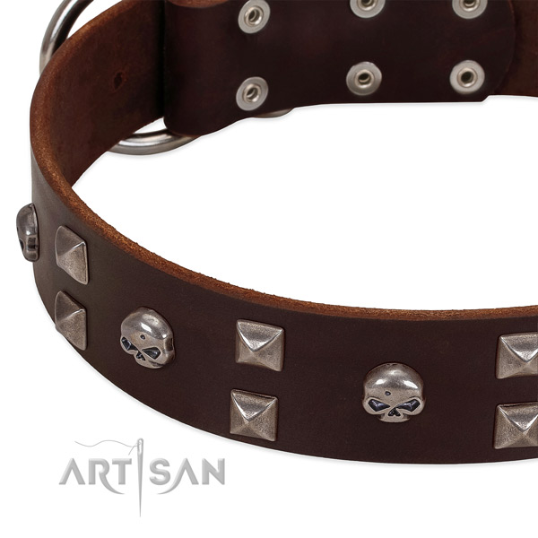 Brown handmade leather dog collar with stylish decorations
