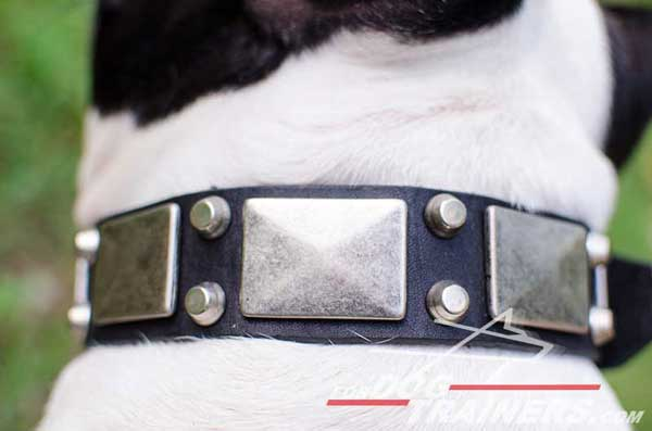 Nickel Plates and Pyramids on Dog Leather Collar