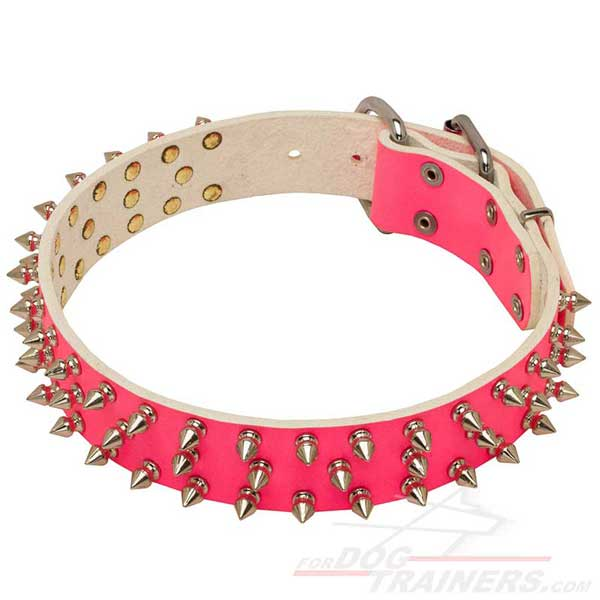 Bright Pink Collar with Nickel Spikes for Cane Corso