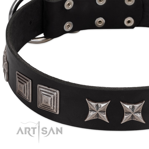 Blacl leather dog collar with cool decorations