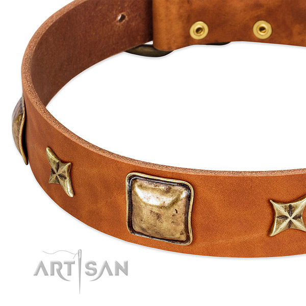 Old bronze-like stars and squares on tan leather FDT Artisan collar