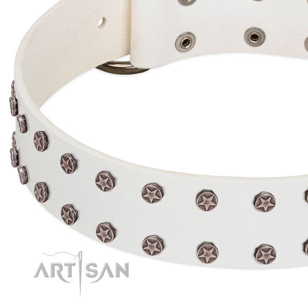 White leather dog collar with starry decorations