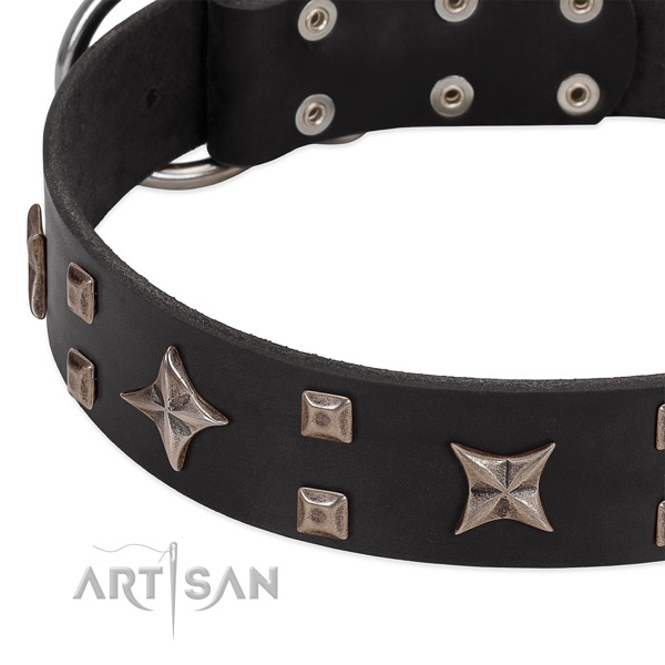 Black leather dog collar with cool decorations
