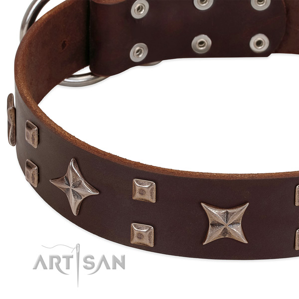Brown leather dog collar with stylish decorations