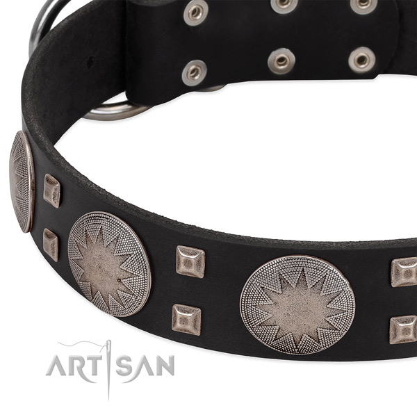 Black leather dog collar with modern decorations