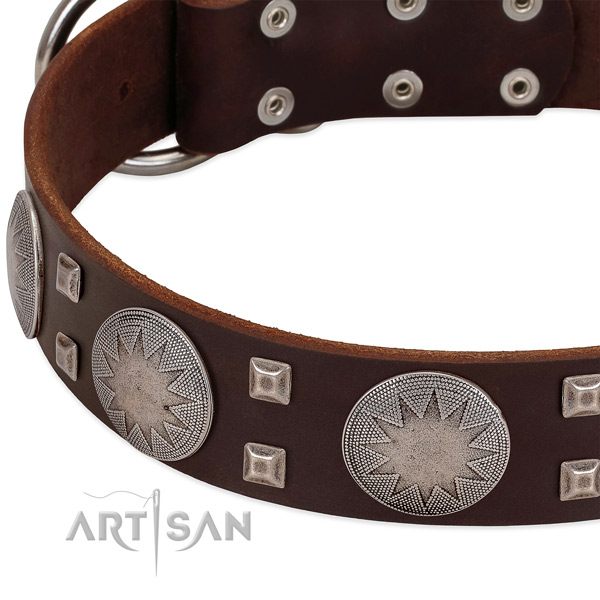 Brown leather dog collar with modern decorations