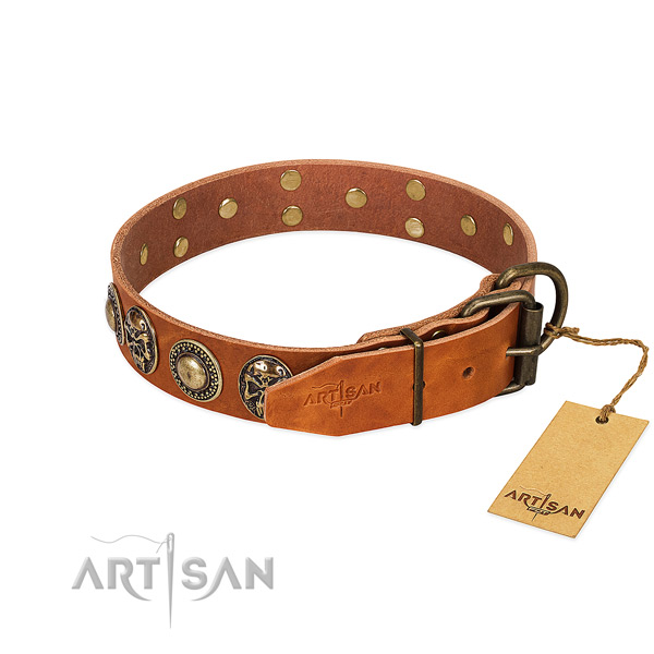 Strong Tan Leather Dog Collar with Riveted Fittings