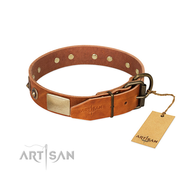 Handmade Tan Leather Dog Collar with Riveted Hardware