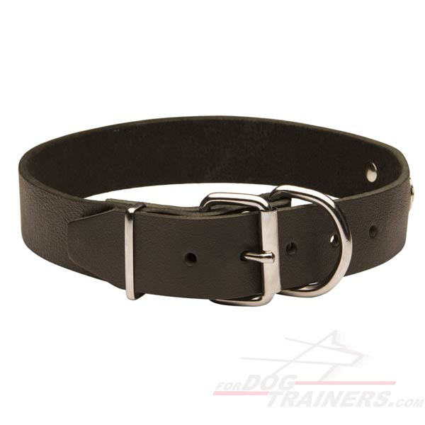 Leather Pitbull Collar with id tag