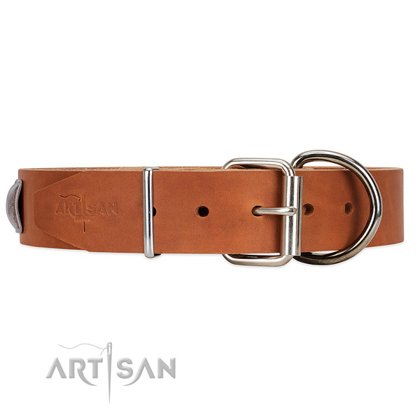 Reliable Hardware on Tan Leather Dog Collar