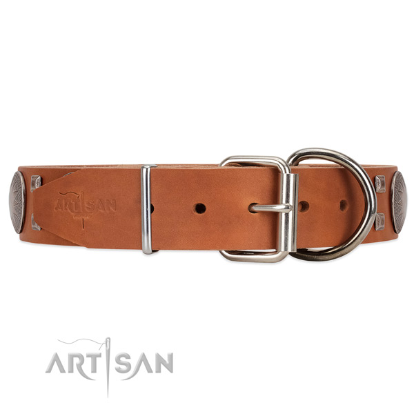 Elegant tan leather dog collar with chrome-plated hardware