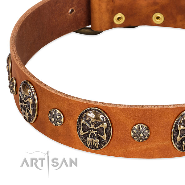 Old bronze-like studs and medallions on tan leather FDT Artisan collar