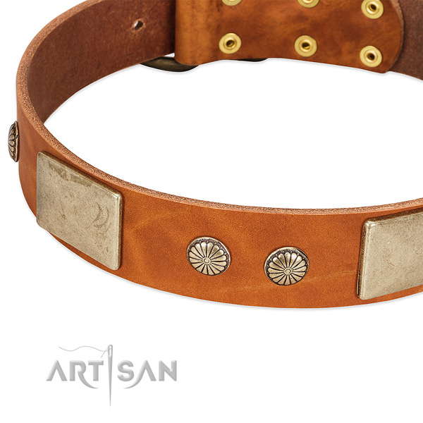 Amazing Leather Dog Collar with Handset Decor