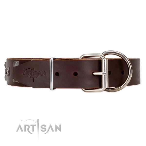 Leather dog collar with old chrome plated hardware