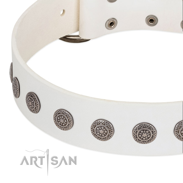 Modern white leather dog collar with chrome-plated decorations