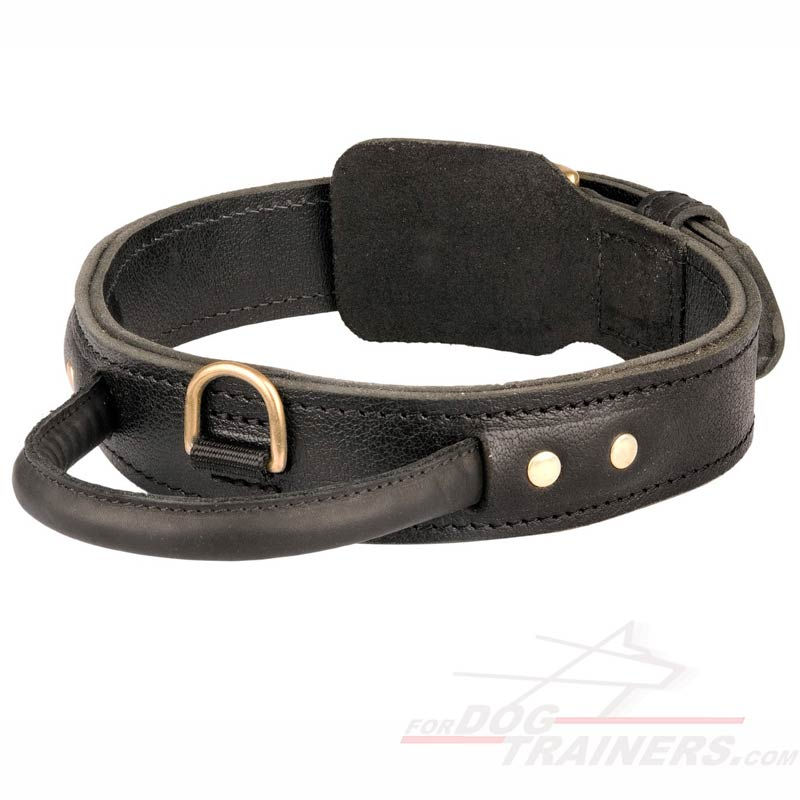 Get Best Dog Collar For Training Dog Collar With Handle