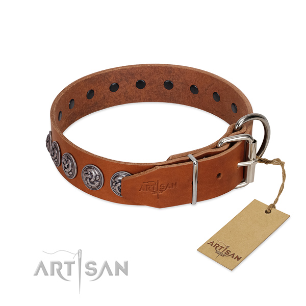 Waxed and Oiled Leather Dog Collar with Chrome-p lated Fittings