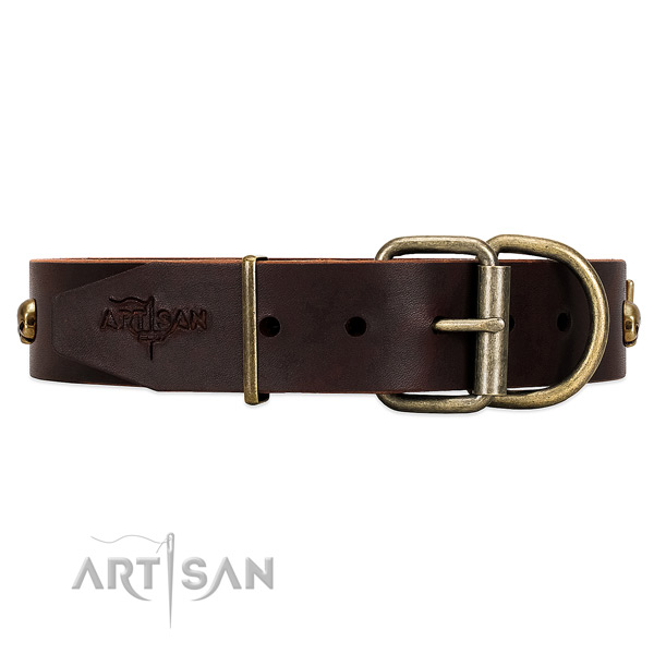 Brown Top Quality Dog Collar Finished with Rust Resistant