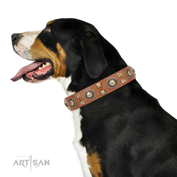 Handcrafted walking leather Swiss Mountain collar