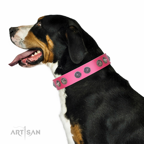Walking top-notch quality leather Swiss Mountain collar
