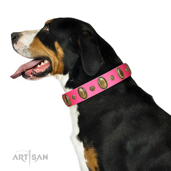 Swiss Mountain Dog Artisan pink leather collar for elegant look
