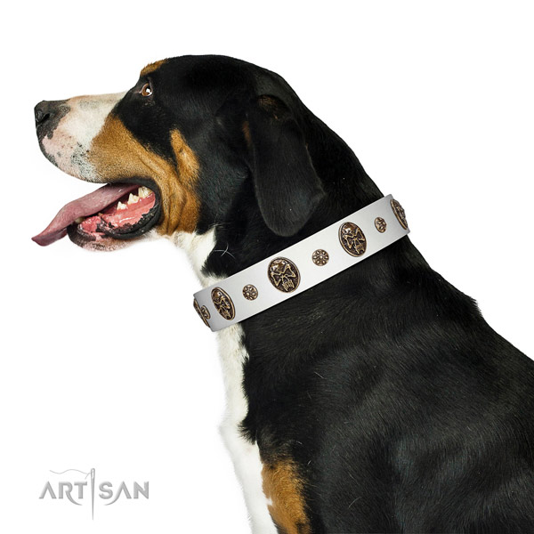 Walking leather Swiss Mountain Dog collar for everyday use