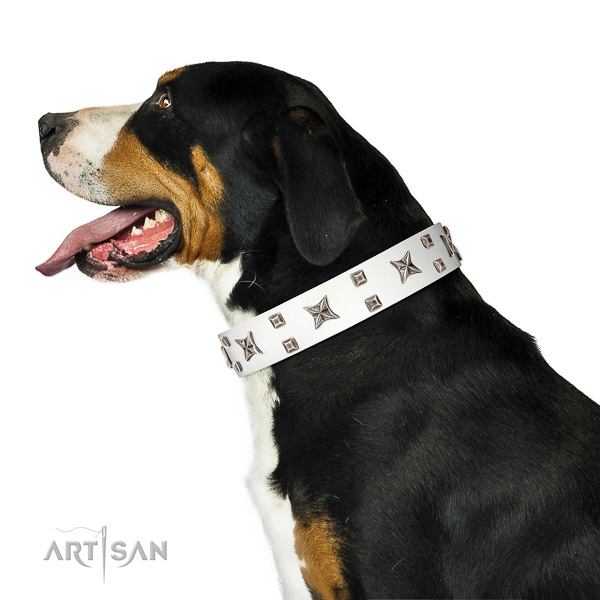 Adjustable leather Swiss Mountain Dog collar for dog impressive look