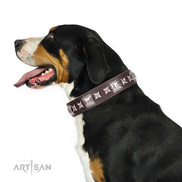 Swiss Mountain Dog decorated full grain leather dog collar with studs