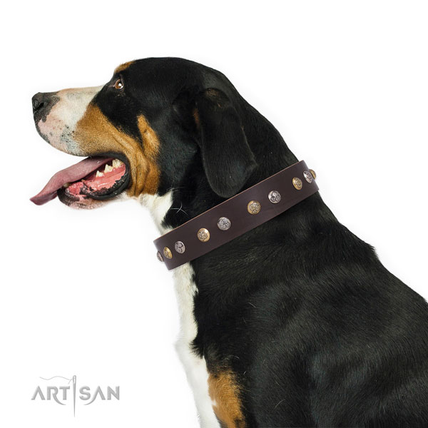 Swiss Mountain Dog studded leather dog collar with decorations