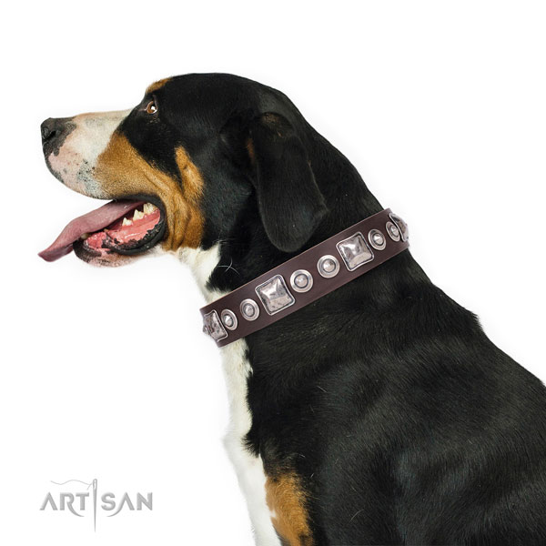 Swiss Mountain Dog decorated leather dog collar with adornments