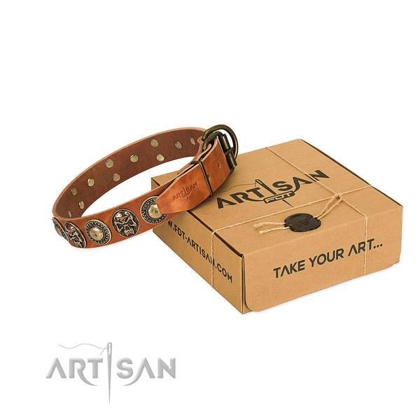 Top Notch Leather Dog Collar in Tan