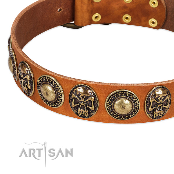Tan Leather Dog Collar with Conchos and Medallions for Fancy Walking