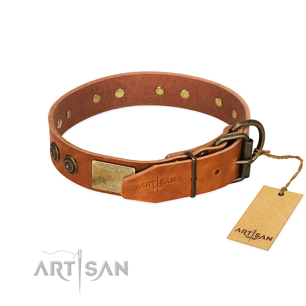 Reliable Control Tan Leather Dog Collar with Riveted Hardware