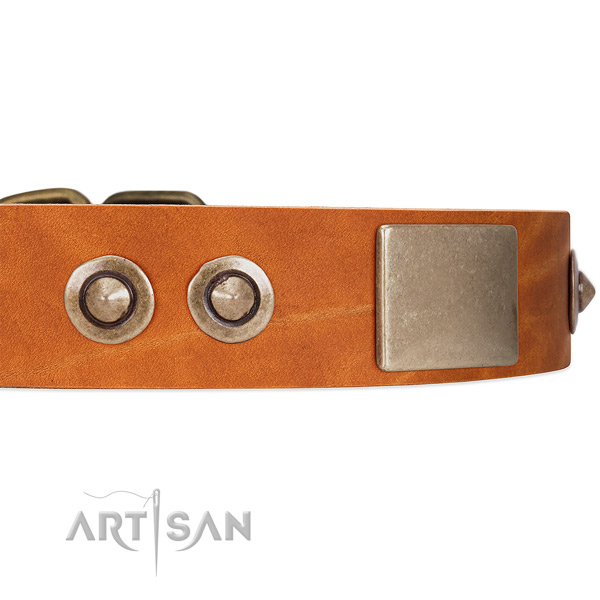 Tan Leather Dog Collar with Conchos and Massive Plates