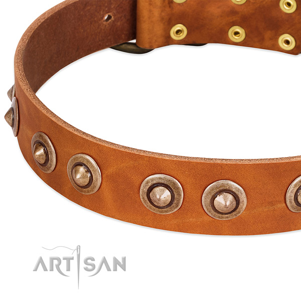Old Bronze-plated Medallions Riveted on Tan Leather Dog Collar from FDT Artisan