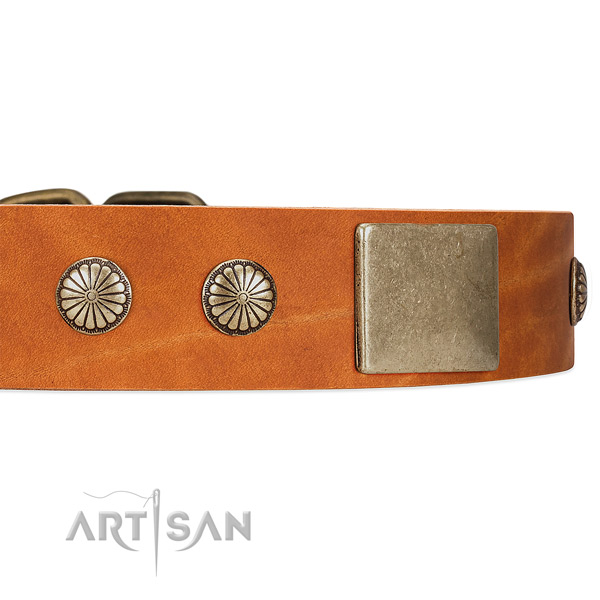 Tan Dog Collar with Old-bronze Plated Decor