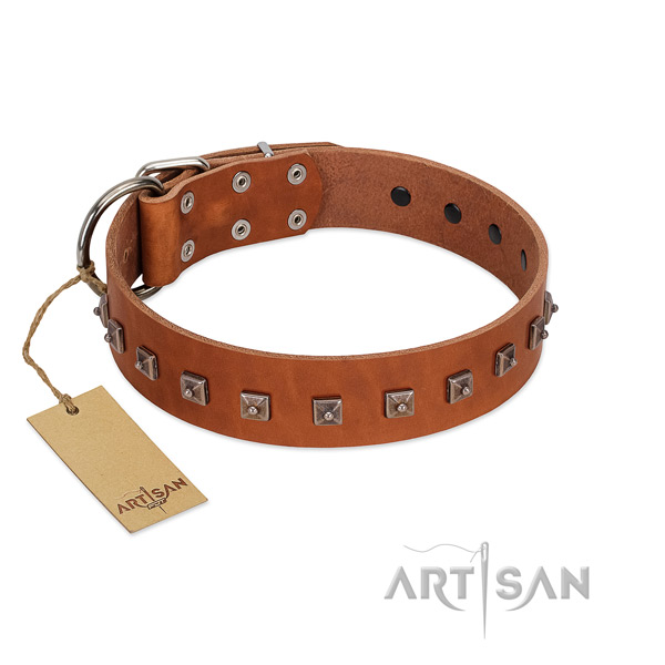 Handcrafted leather dog collar with durable hardware