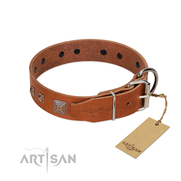 Soft tan leather dog collar with chrome plated buckle for easy fitting