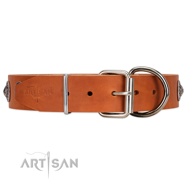 Tan leather dog collar with firm reinforced hardware