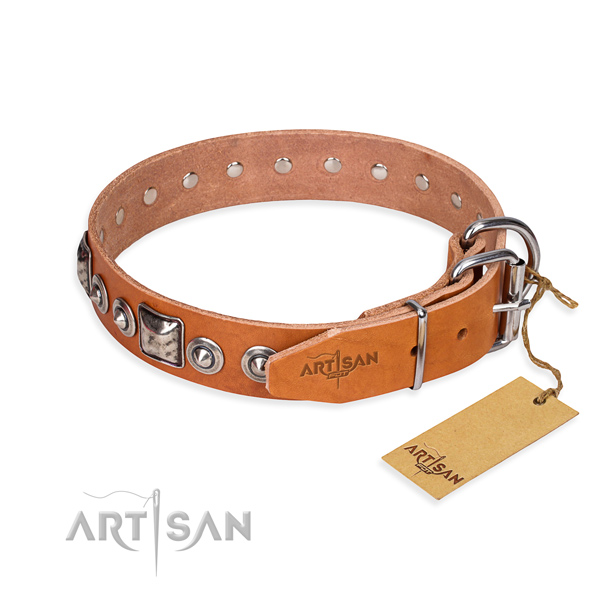 Tan leather dog collar with reliable fittings