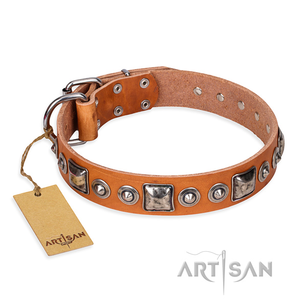 Tan leather dog collar with bulging decorations
