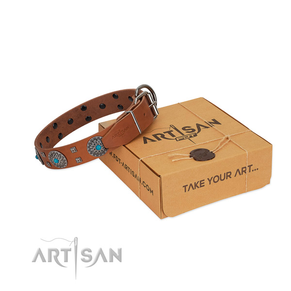 Tan leather dog collar for extraordinary walking