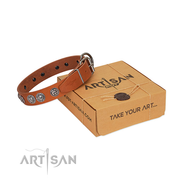 Tan leather dog collar with bulging circles