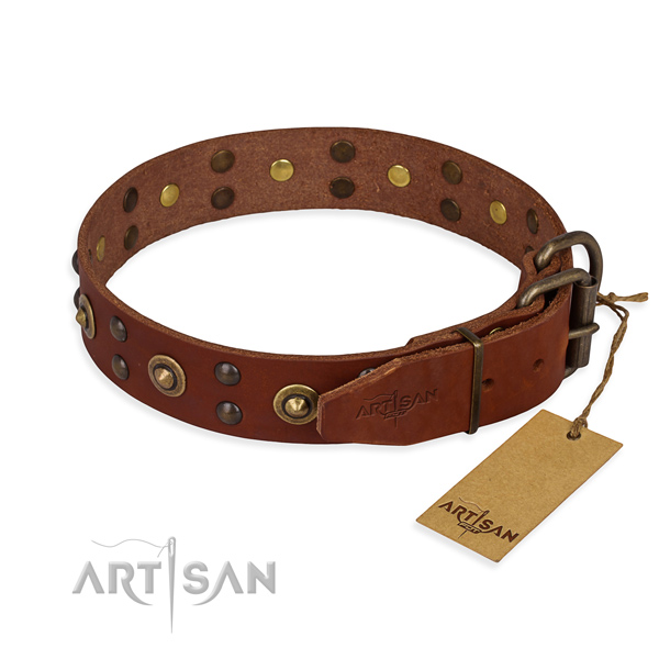 Tan leather dog collar with sturdy fittings